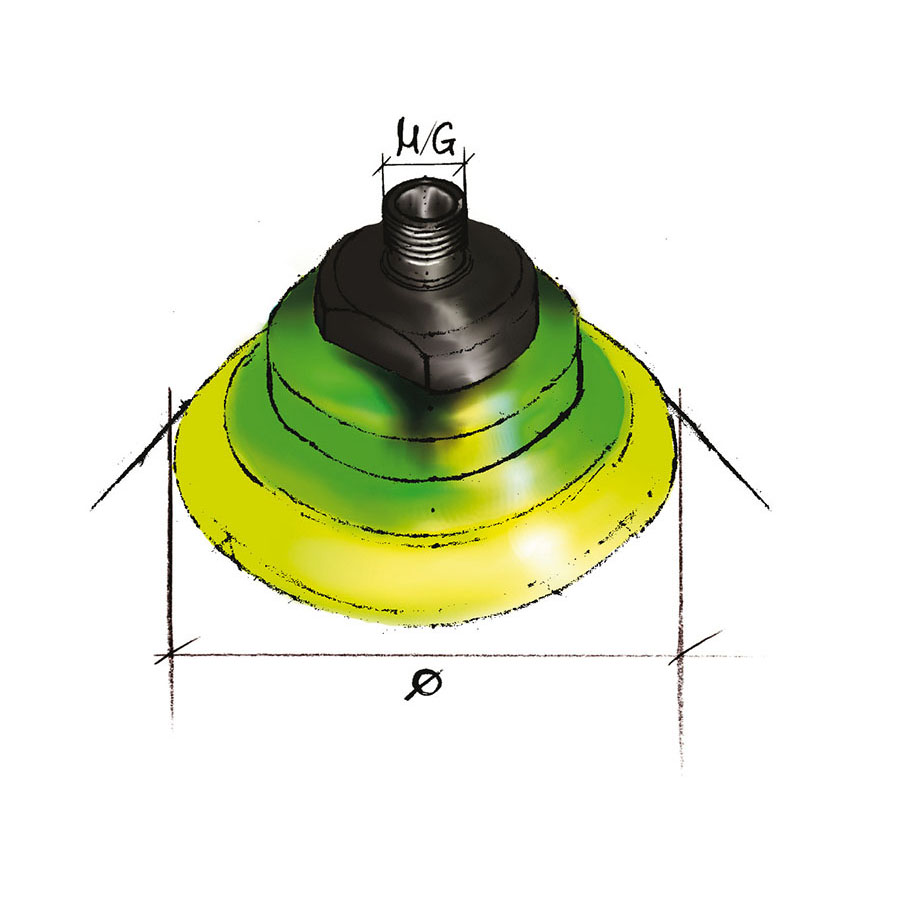 VA-031-01
